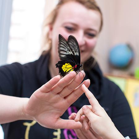 Восторг и положительные эмоции от соприкосновения с прекрасными живыми бабочками.