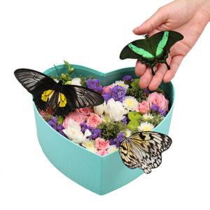 Композиции с цветами и живыми бабочками