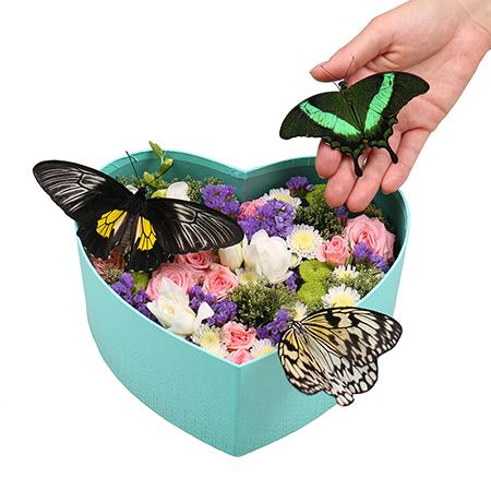 Живые бабочки с цветами в коробке сердце