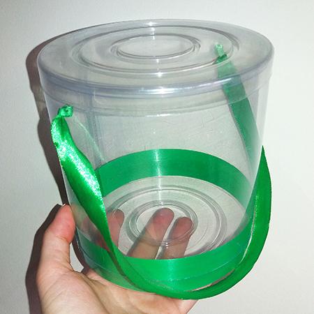 Прозрачная коробочка с крышечкой и живыми бабочками для подарка.