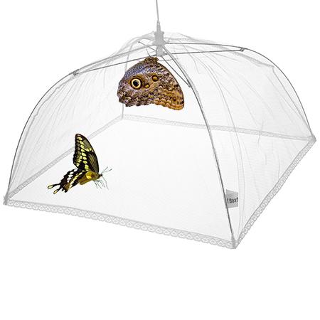 Складной домик для живых бабочек