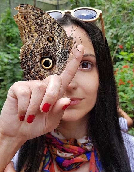 Имаго - взрослая особь бабочки
