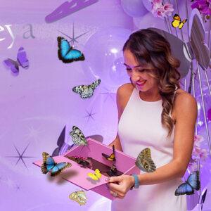 Салют живых бабочек