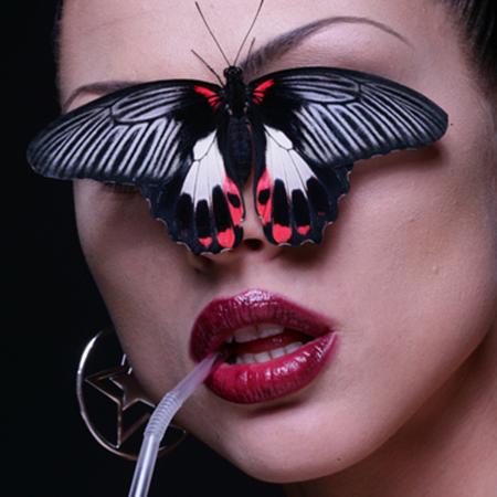 Фотосъёмка живых бабочек в студии