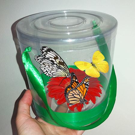 Три живые бабочки в прозрачном тубусе с герберой.