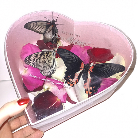 Коробка сердце с лепестками роз и живыми бабочкамибабочкой